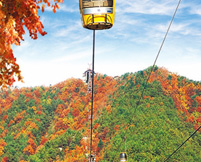 Mt.Palgongsan Cable Car