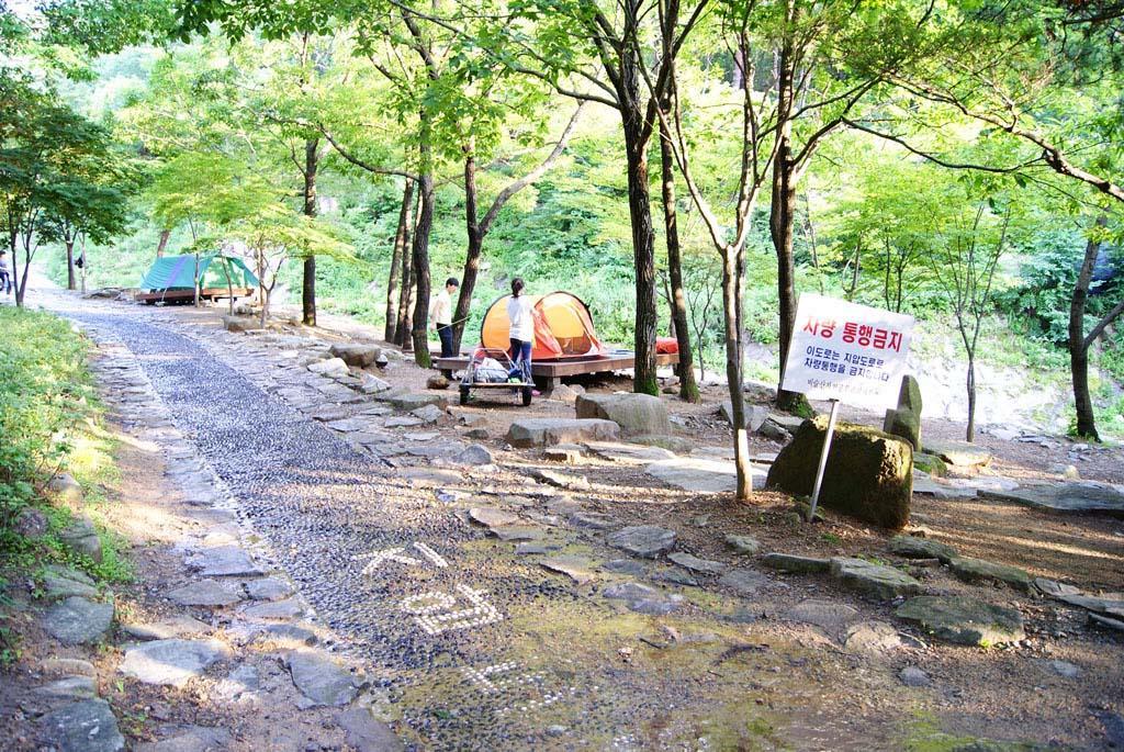 비슬산자연휴양림