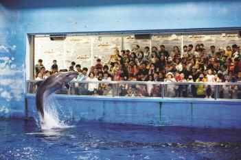 장생포 고래박물관