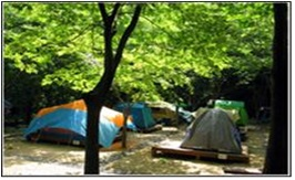 Donghwa Camping Place