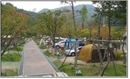 道鹤野营场