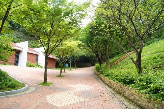 봉무공원야영장 4
