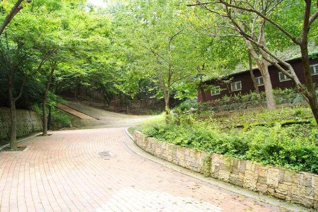 봉무공원야영장 3