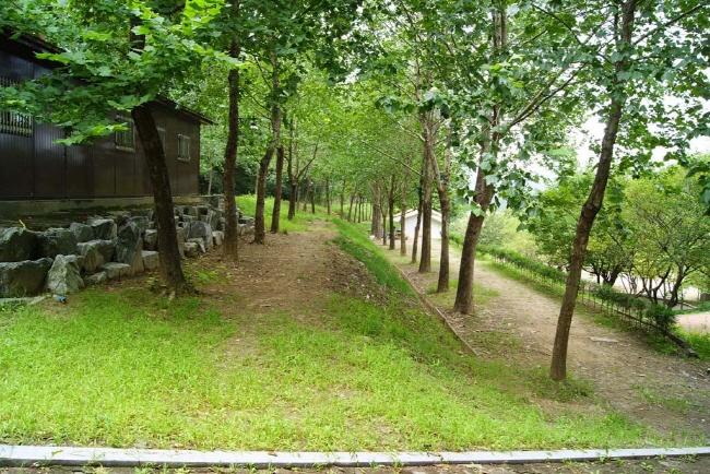 Bongmu Park Camping Field