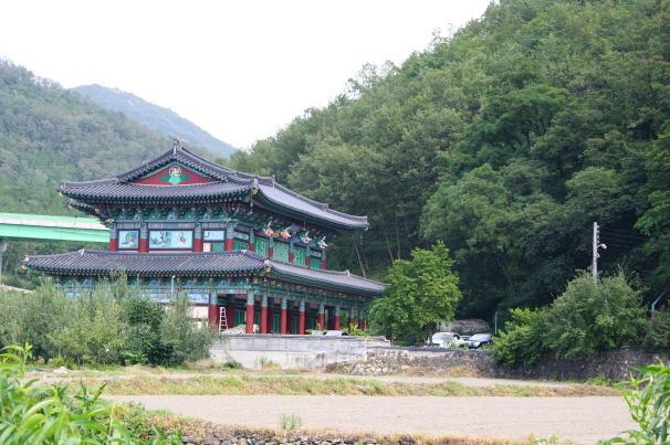 Daegu Do-dong Arbor Vitae Forest
