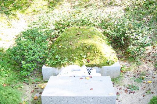 Mitsusaki Rintaro's Tomb
