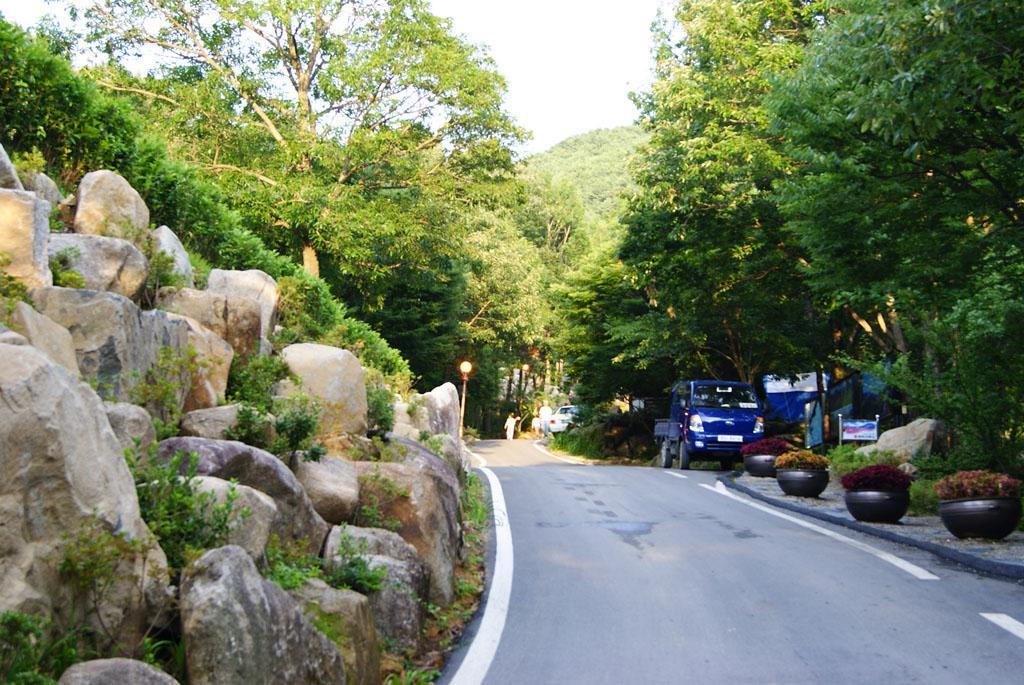 비슬산자연휴양림 3