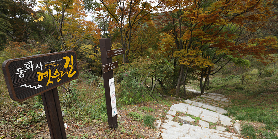 팔공산자연공원