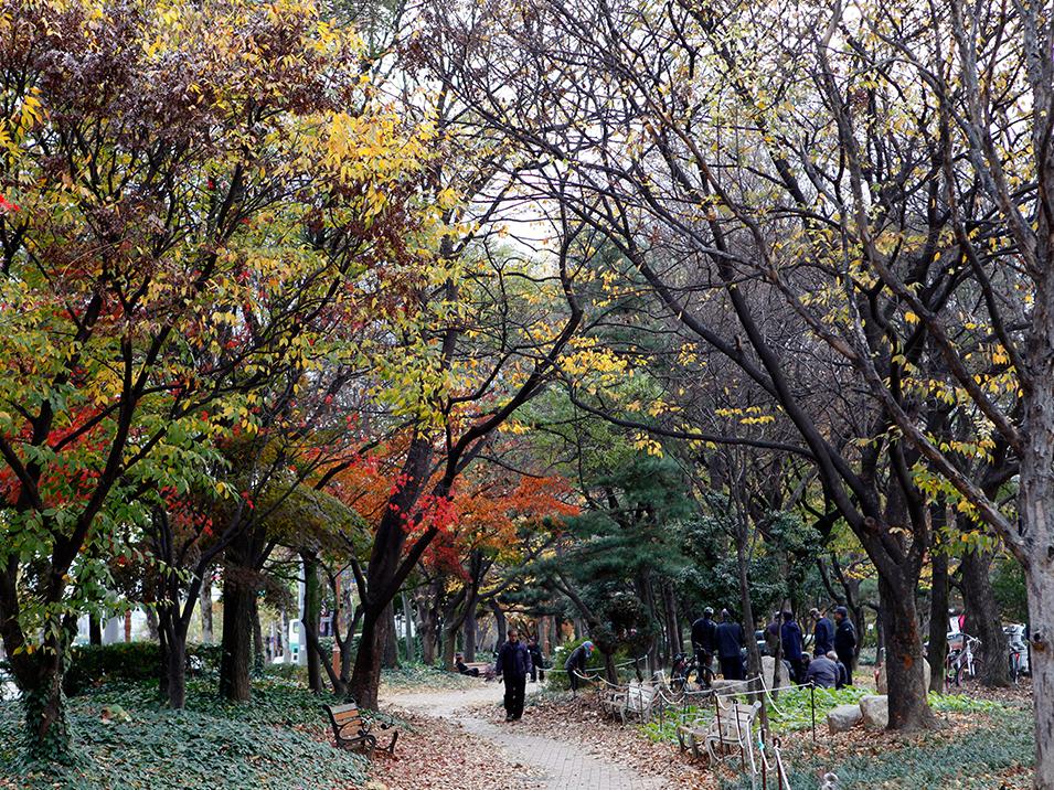 두류공원1