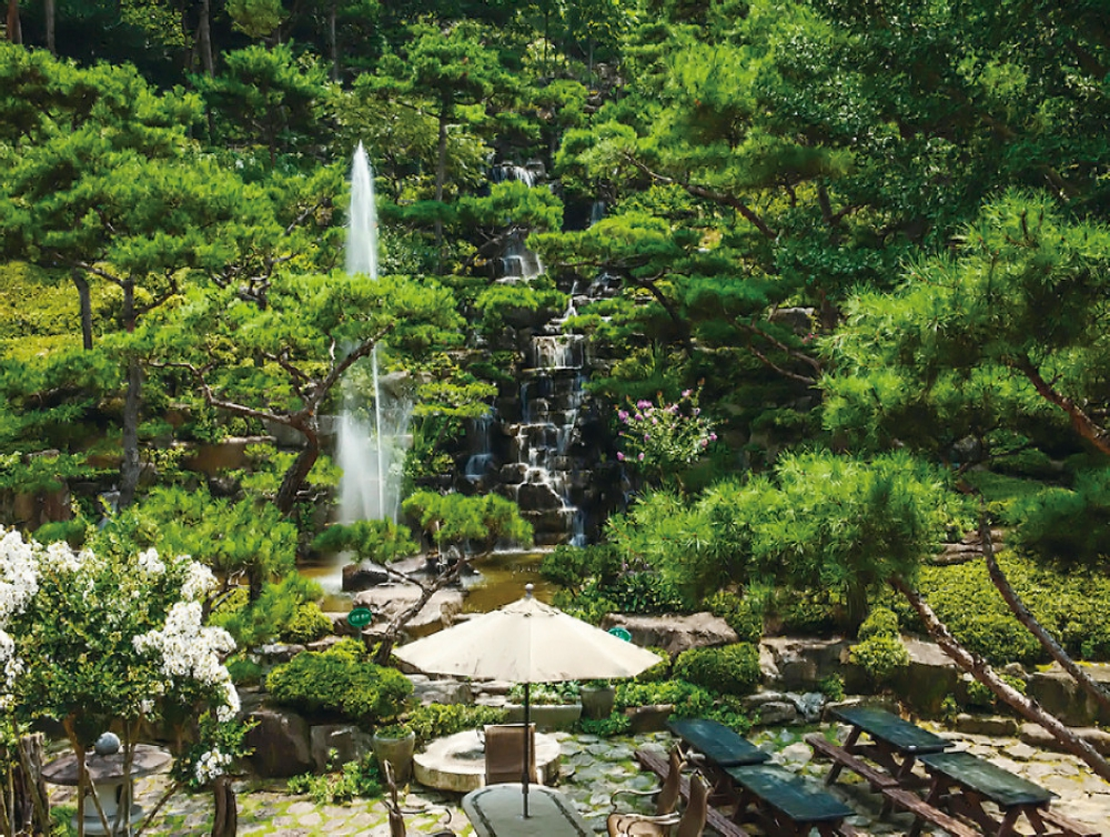 大韓樹木園