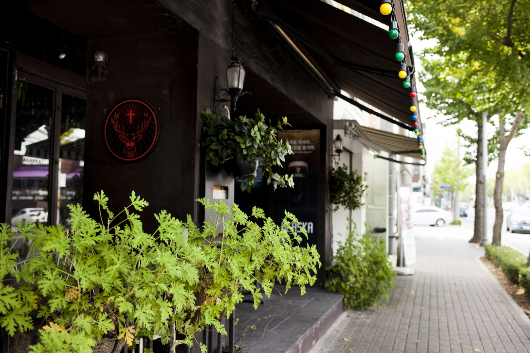 앞산 카페거리1