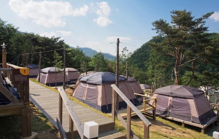 텐트빌리지 1