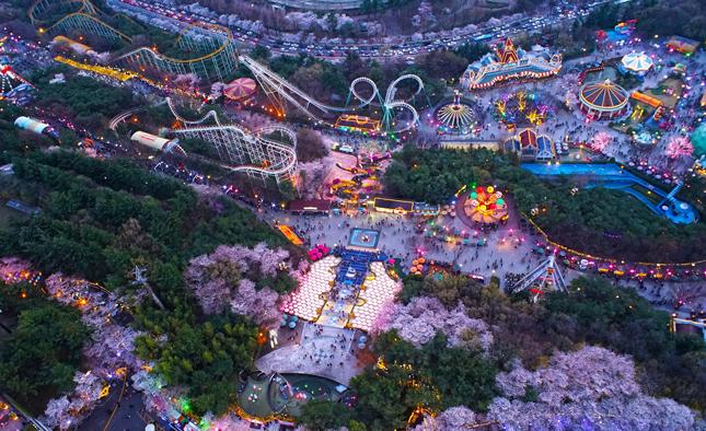 이월드 별빛벚꽃축제