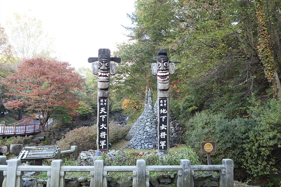 비슬산군립공원3